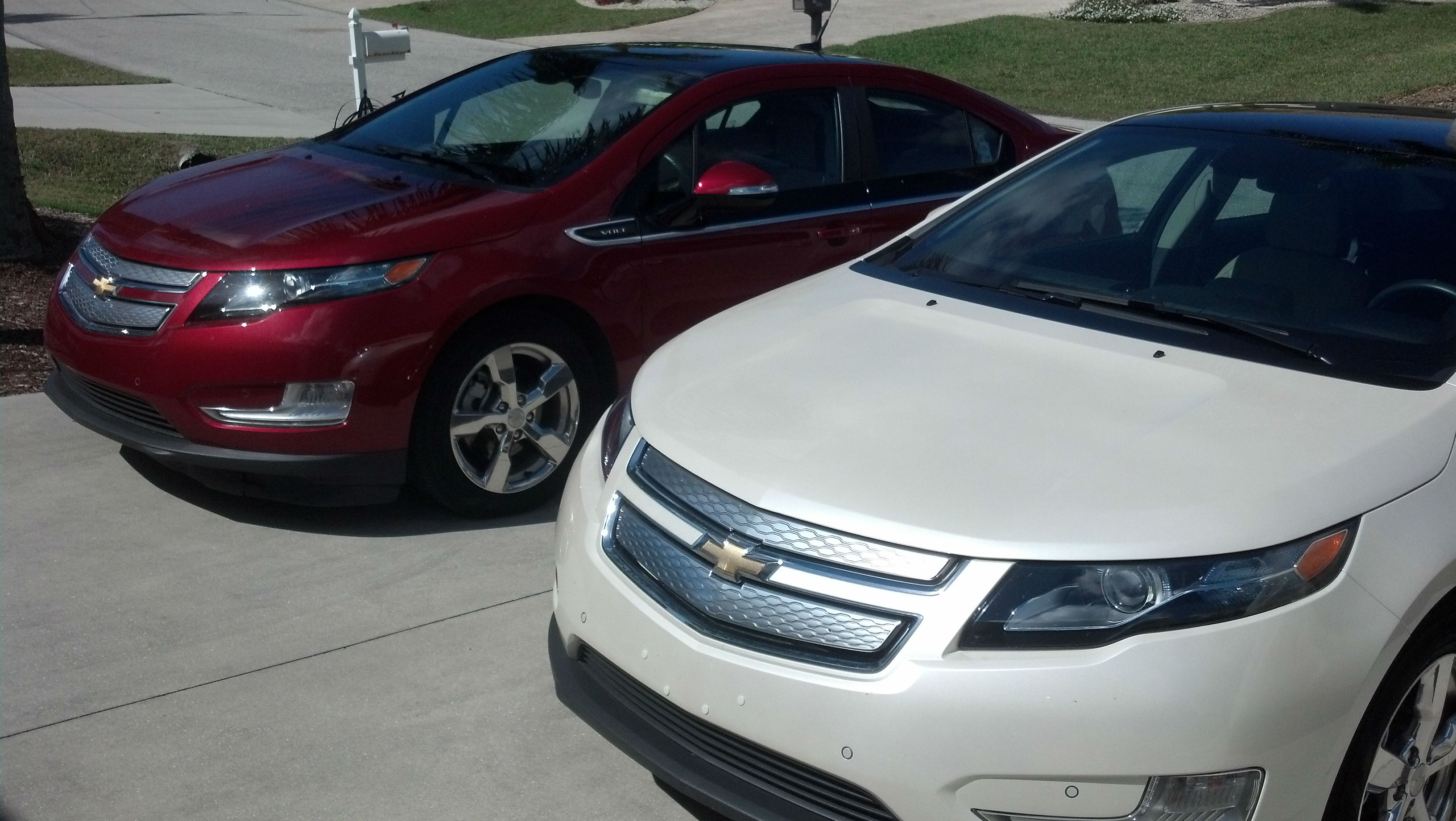 Volt siblings front view 1
