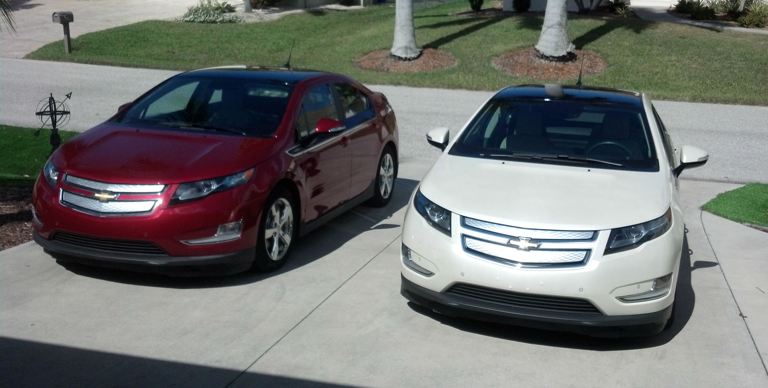 Volt siblings front view 2